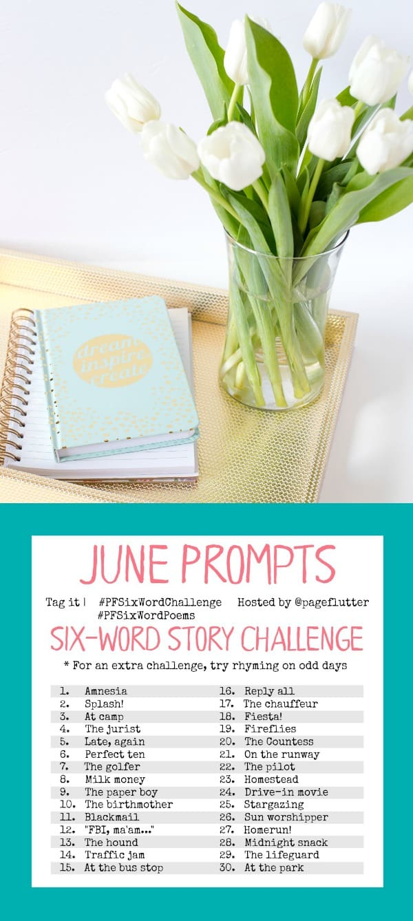 June challenge prompts for the #PFSixWordChallenge. Screen-free summer creative exercise for your Bullet Journal!