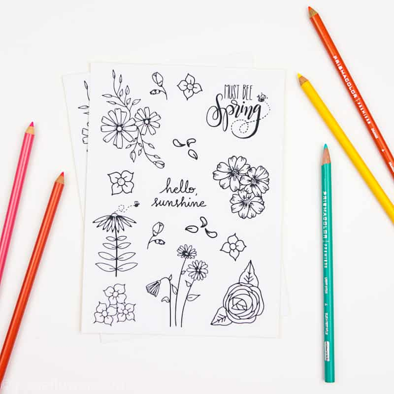 15 Printable Floral Planner Stickers to Beautify Your Entire