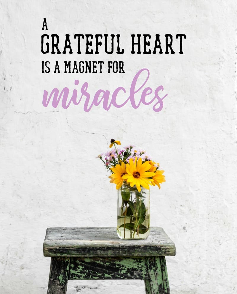 40 Ways to Practice Gratitude. A grateful heart is a magnet for miracles | pageflutter.com